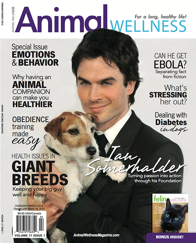Animal Wellness Magazine Feb/March 2015