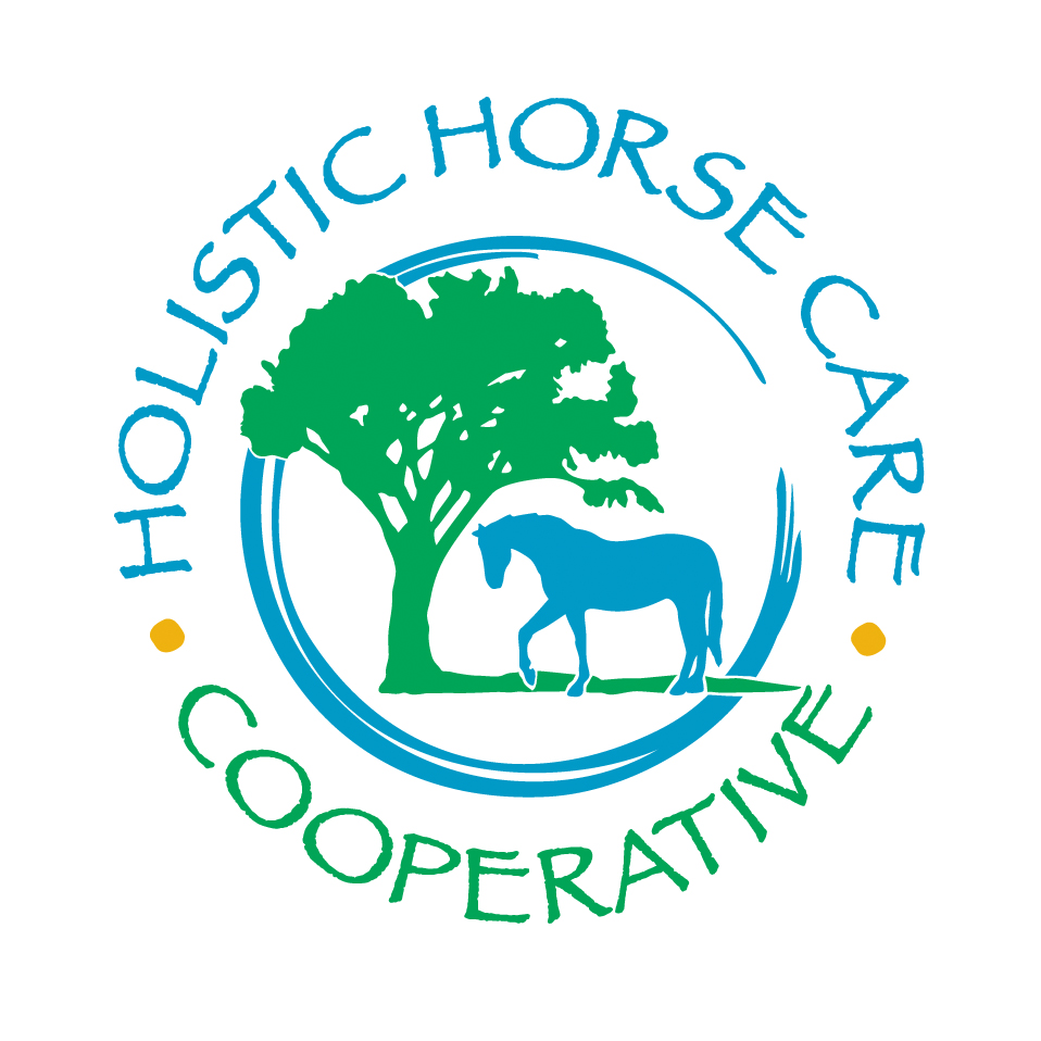 Holistic Horse Affair since 2011