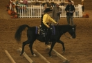 CAHC Fall Show 2008