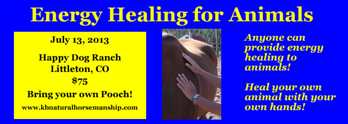 Energy Healing for Animals Workshop