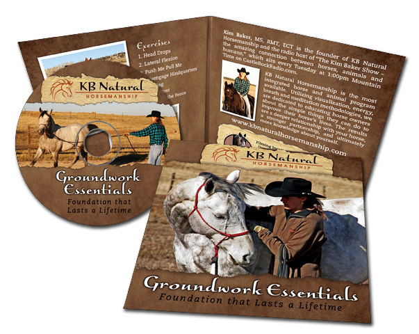 Groundwork Essentials DVD